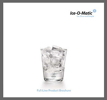 Your Guide to Ice For Your Florida Foodservice Business